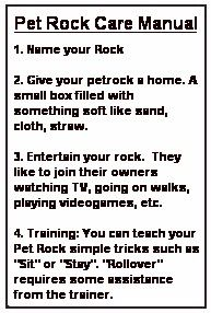 pet rock owners manual pdf
