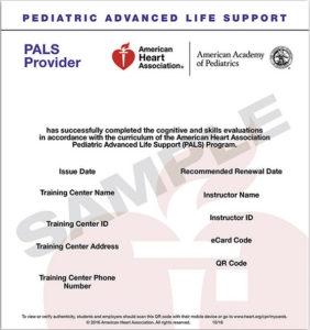 2015 pediatric advanced life support provider manual