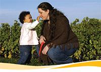 www.ednet.ns.ca earlyyears documents providers manual